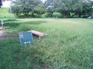 公園管理のご紹介